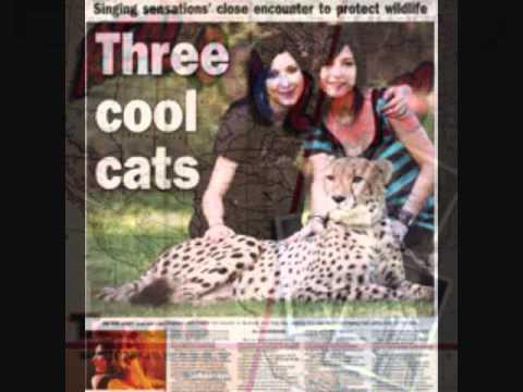 3 Cool Cats ~ Silver Beatles  LP ~ joey.wmv