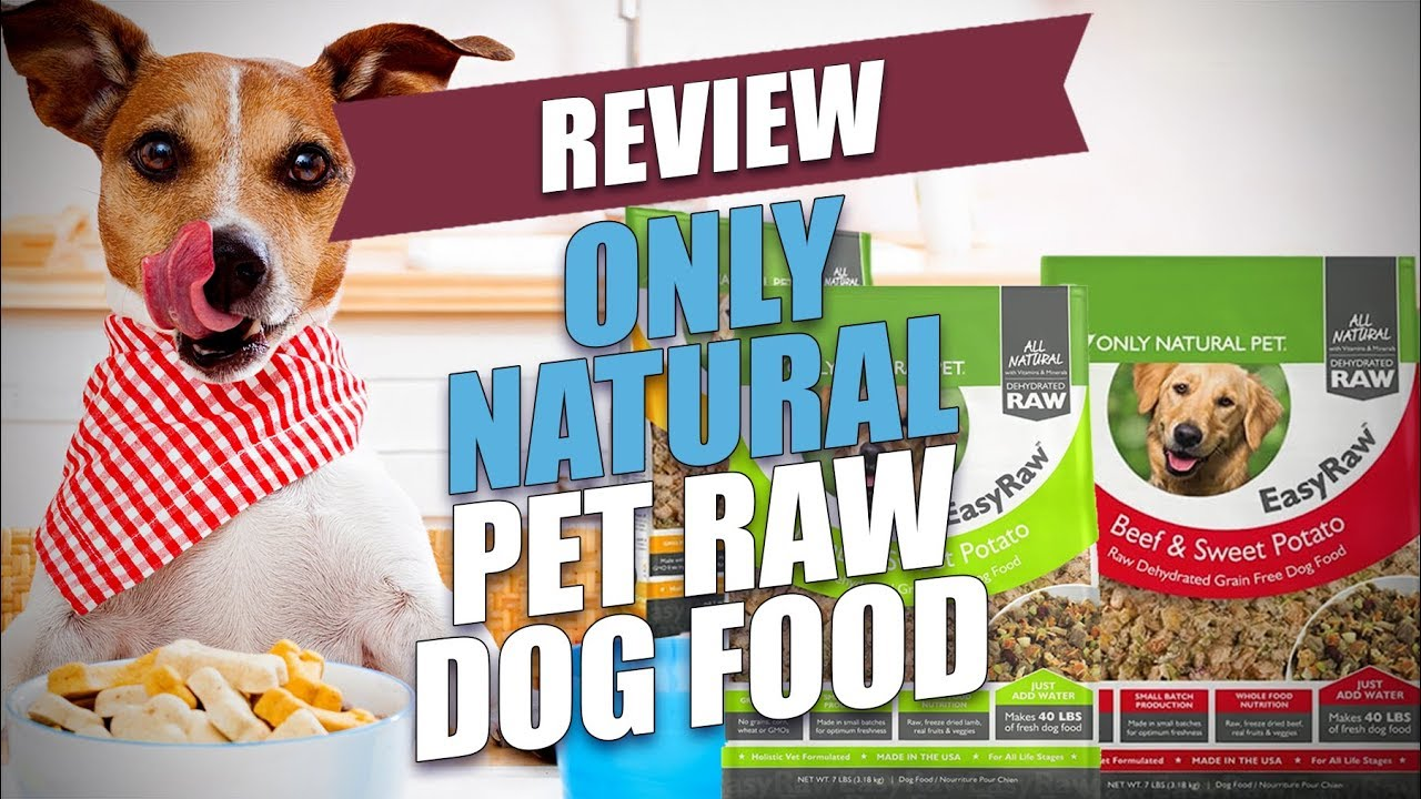 Only Natural Pet Raw Dog Food Review 2018 Youtube