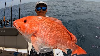 Fishing for Highly Endangered Fish!