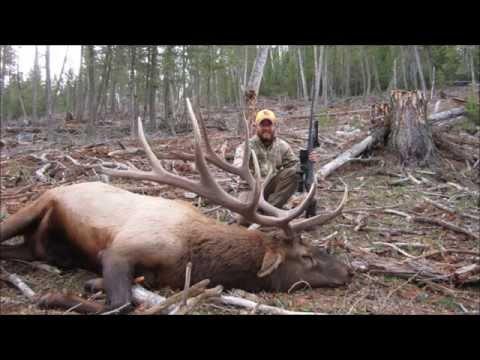 2014 Wyoming Bull Elk