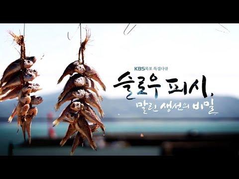 [특집] 슬로우피쉬 - 말린생선의 비밀 _ 171129 KBS 목포