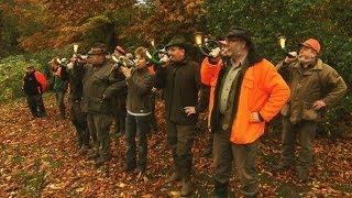 Jagd auf Jäger: Tierschützer gegen Förster