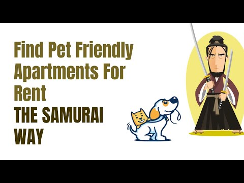 Find Pet-Friendly Apartments For Rent - The Samurai Way