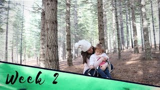 TREE HUNTING ADVENTURE | Vlog Week 2