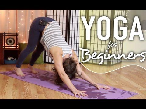 yoga for beginners  downward dog break down  beginner