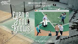 Gambar cover [VIET/ENG/ROM] EVEN A FOOL KNOWS  -  STRAY KIDS (MIXTAPE: ON TRACK)