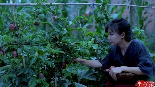 (百香果)Eat a lot of food, soak the summer of the fruity fruit ——passion fruit  |Liziqi channel