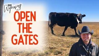 gates-and-good-news