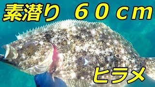 台風前の日本海。 運よく60cmのヒラメに出会えました。60cm以上...