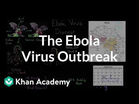 Understanding the Ebola virus outbreak | Heatlh & Medicine | Khan Academy