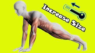 Kegel Exercise Planks For Good Strength