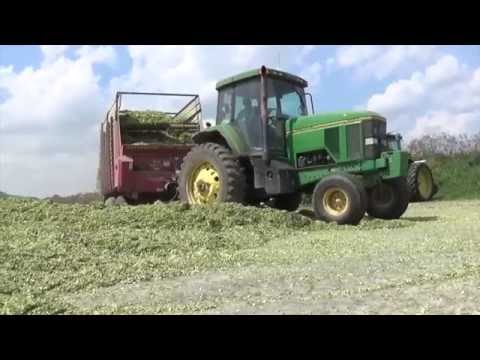 Chopping Corn Silage near Maria Stein Ohio - August 2016