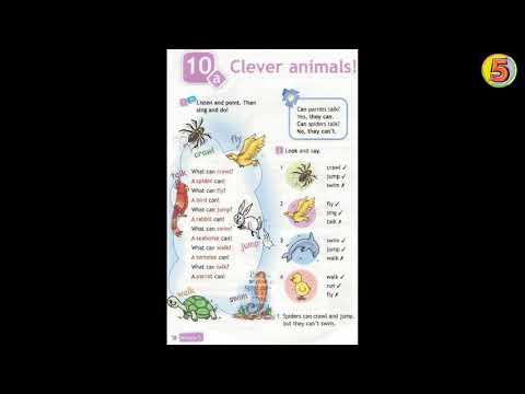 Spotlight. Английский язык. 3 класс. Часть 10a. Стр. 78. Упражнение 1. Clever Animals