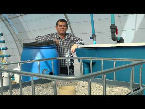 Sustainable Aquaponics - The vision to construct a plant (HD)