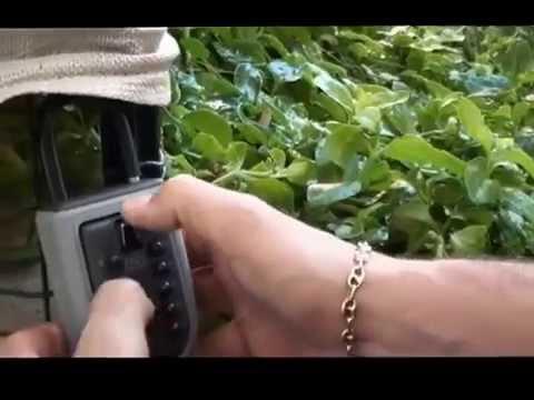 Cadenas Cache Cls YouTube