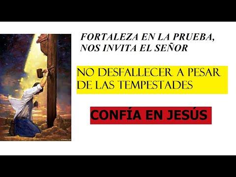 FORTALEZA EN LA PRUEBA. CARTA DE SANTIAGO.CAPITULOS 1 AL 5.