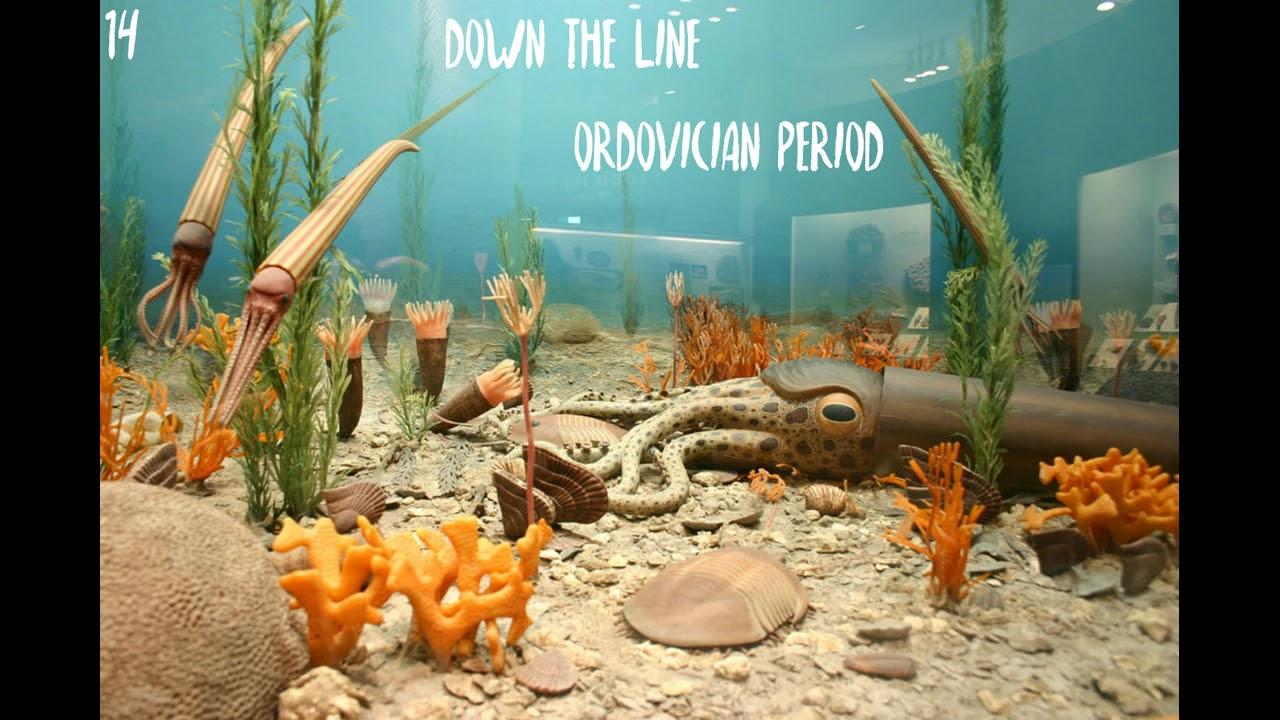 Episode 14 Paleozoic Era Part 2 Ordovician Period