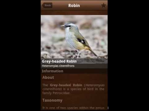 Bird Calls : 2000+ Bird Songs & Sounds for Android Mobile & Tablets