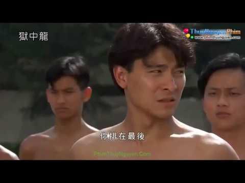 Đại Ca Trong Tù Phim Lẽ Hành Động Võ Thuật Hong Kong Hay Thuyết Minh
