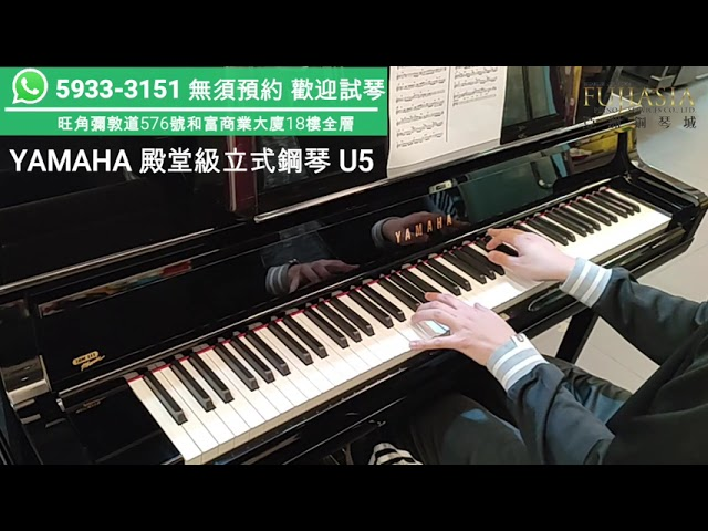 【 YAMAHA頂級演奏型號】U5 小諧星 Edan