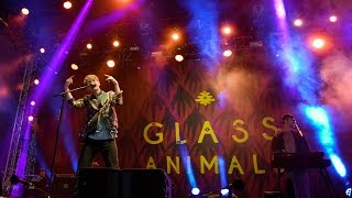 Glass Animals Pools Reading 2015