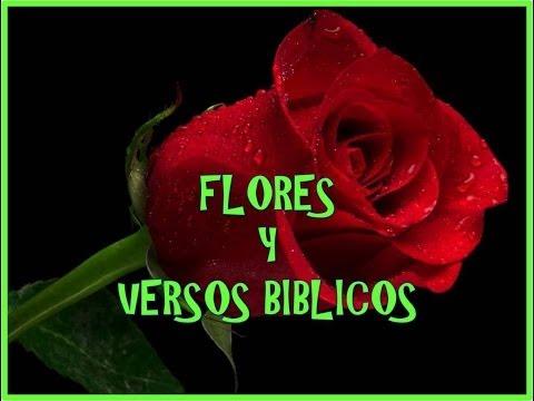 FLORES Y VERSOS BIBLICOS