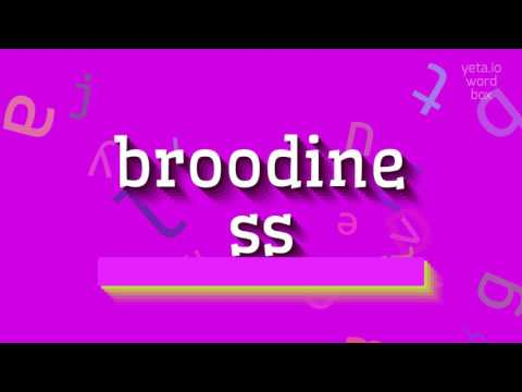 """How to say """"broodiness""""! (High Quality Voices)"""