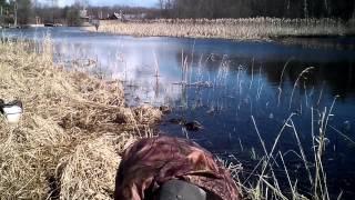 Рибалка в с. Купанском Переславского району 25.04.15