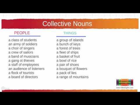 195 Collective Nouns