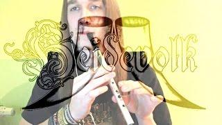 Vulgaris Magistralis - Heidevolk- Tin Whistle Cover