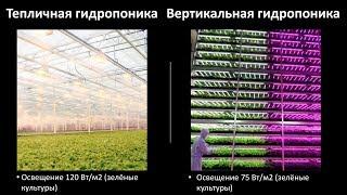 Вертикальные фермы. Конкурентоспособность продукции (салаты, укроп, кинза)