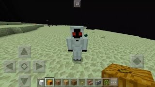 What Happens When You Spawn Entity 303 in The End? - Minecraft PE (Pocket Edition)