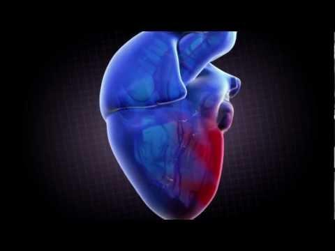 """Washington Hospital Center """"Heart"""""""