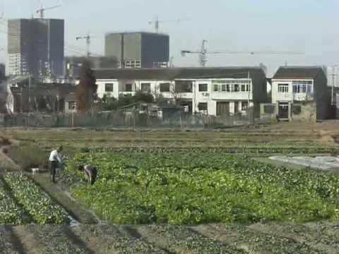 Ningbo - Farmers next to Nottingham Uni