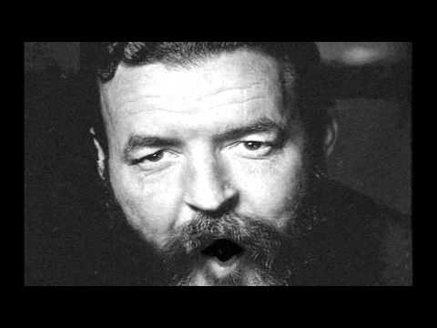 """Randall Jarrell """"The Death of the Ball Turret Gunner"""" Poem animation WW2"""