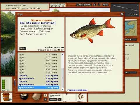 Скачать игру Русская рыбалка 3