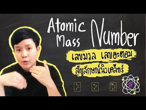 เลขมวล เลขอะตอม และสัญลักษณ์นิวเคลียร์ | สรุปเคมี by ครูพี่ตาล