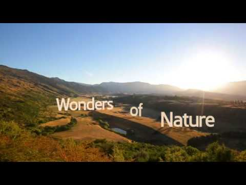 Wonders of Nature Samsung video HD YouTube - YouTube