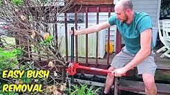 Easiest Way to Remove Bush Stumps!