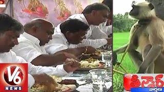 Langur Security for Telangana Ministers at Haritha Haram Program   Warangal   Teenmaar News   V6News