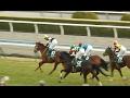 第52回京都牝馬ステークス2017/レッツゴードンキ 復活の勝利 現地映像(2017.2.18)