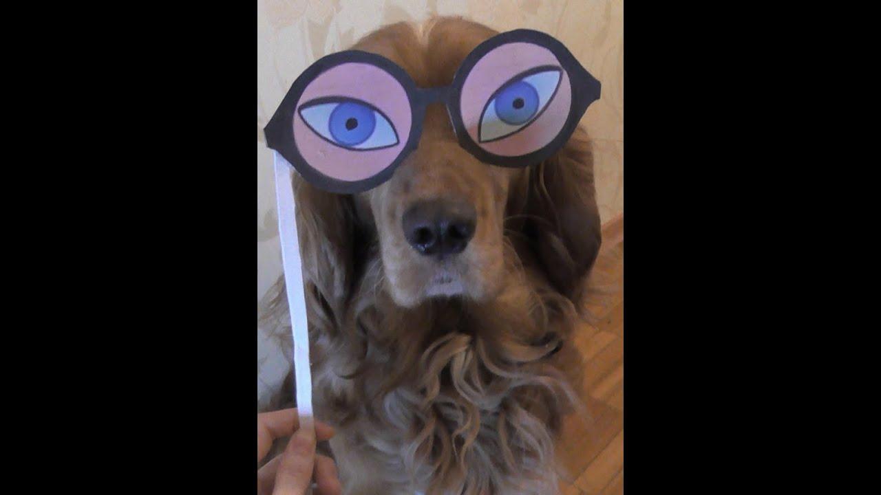 Весёлые маски для фото :) - YouTube