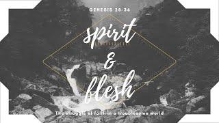 Trust and Surrender   Genesis 32:1-21