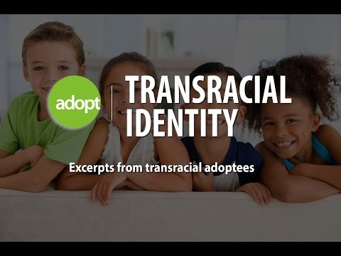 a discussion on trans racial adoption