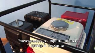 Бензиновый генератор DAISHIN SEB3000Ha(Бензиновый генератор DAISHIN SEB 3000Ha - http://electromotor.com.ua/video/generator/2513-gasoline-generator-daishin-seb3000ha. Доставка по ..., 2011-10-20T08:46:11.000Z)