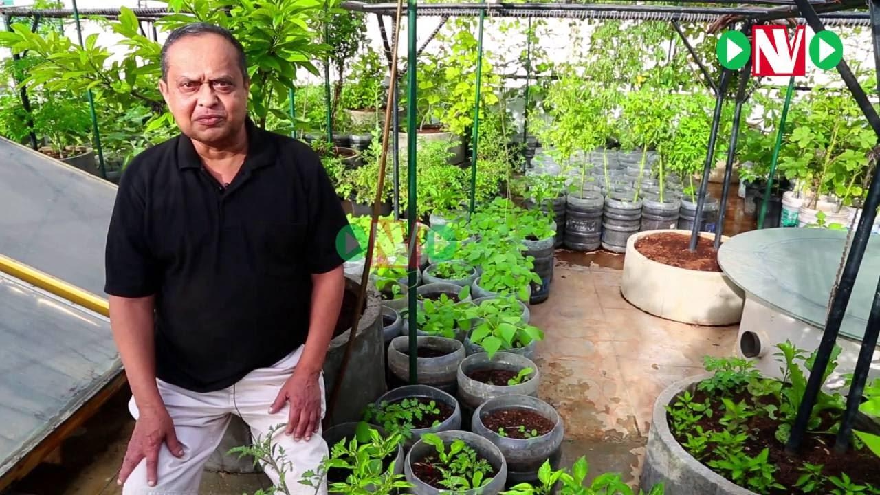 Terrace Gardening Meet One Of The Most Successful Kitchen Gardener Sridevi Youtube
