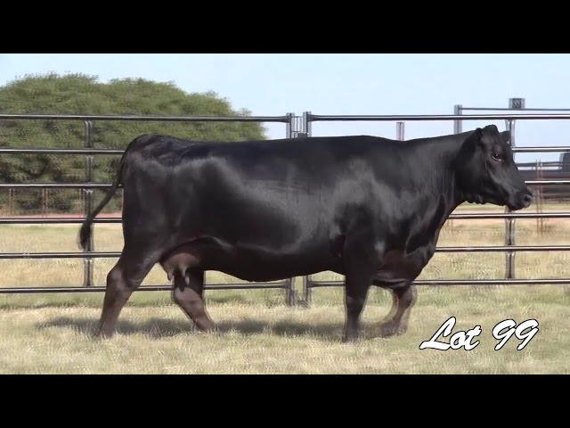 Pollard Farms Lot 99