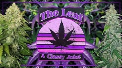 Purple Leaf Cannabis Dispensary is now open on Bridge Rd in Charleston, WV