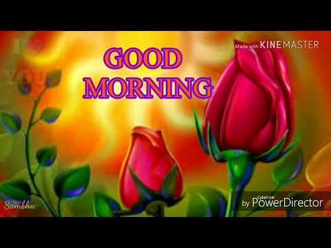 Santali Whatsapp Status Good Morning Hd Video 2018