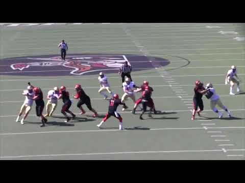 Heidelberg Football vs. John Carroll 2017 Highlights